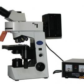 高性价比MF41荧光显微镜