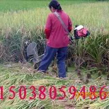 手提式小麦收割机 手提式水稻收割机 割稻机