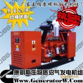 50KW 康明斯沼气发电机、200KW沼气发电机