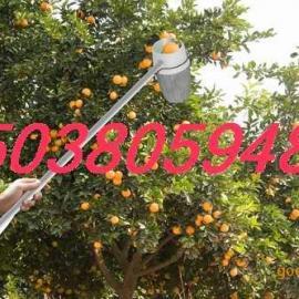 苹果摘果器 果树摘果机 手动摘果器