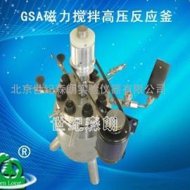 GSA磁力搅拌高压反应釜