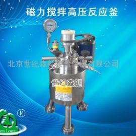 磁力搅拌高压反应釜