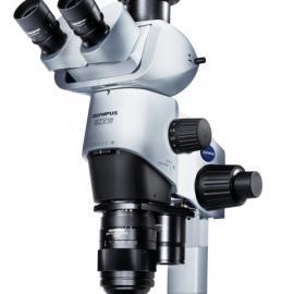 双目/三目体视显微镜|奥林巴斯显微镜|SZX16科研型体视显微镜