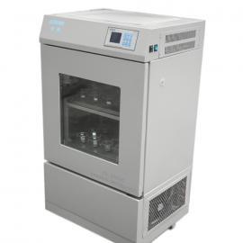 单开门双层小容量空气浴摇床TS-2102C