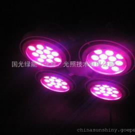 北京植物灯 植物生长灯 植物助长灯