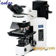 导电料子显微镜/微分干涉显微镜