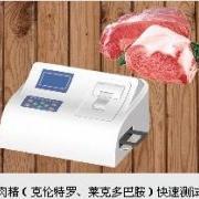 瘦肉精快速测试仪DSVD48SY