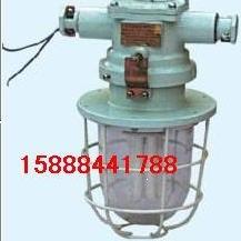 DGS-20/127Y,矿用荧光灯,20W隔爆型荧光灯