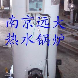 南京远大供应立式沼气煤两用采暖锅炉