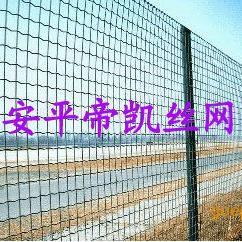 PVC包塑荷兰网 防护网 围玉米专用网生产厂家