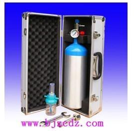 箱式供氧器(吸氧型) 供氧器 北京