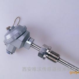 螺纹安装温度变送器