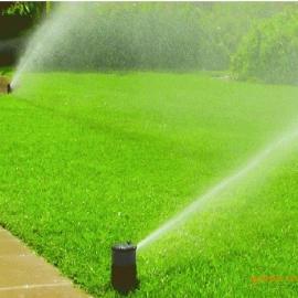 美国雨鸟3504喷头 绿地灌溉喷头 景观草坪喷灌 郑州灌溉喷头