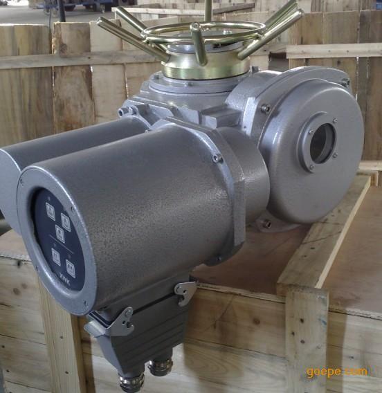 大力矩电动头DZW180-24-A00-WK 扬修执行器