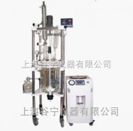 玻璃反应釜/双层玻璃反应器GN-20L