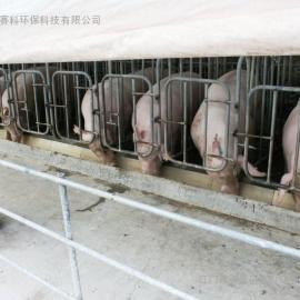 养猪场除臭剂