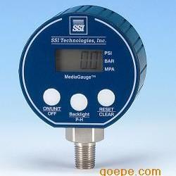 高精度带输出信号数字压力表