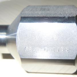 二流�w��嘴GSIM60110S