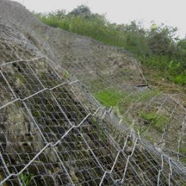黄石热镀锌勾花网|边坡镀锌铁丝网湖北植草防护网