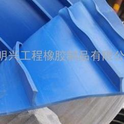 外贴式塑料止水带300宽