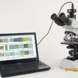 万深 浮游生物(藻类、浮游动物)计数仪(MIA-F型)