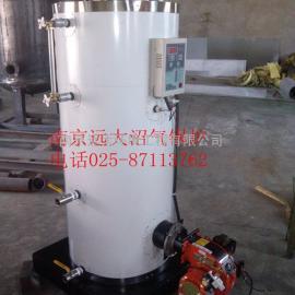 沼气热水锅炉