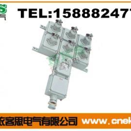 BXS-2/K|防爆检修电源插座箱(IIB,IIC)