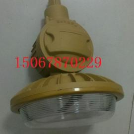 SBD1103-YQL50A管吊式免维护节能防爆灯‖CT6