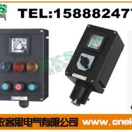LCZ8030-B8防爆防腐操作柱(IIC)