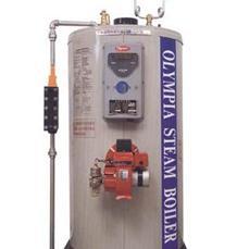 低噪音立式蒸汽锅炉