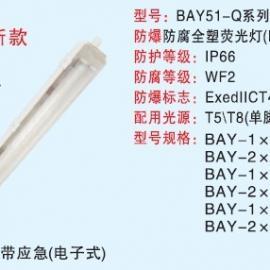 BAY51-Q防爆防腐全塑荧光灯(可带T5节能灯)应急