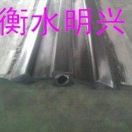 扬州市CB型钢边止水带