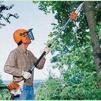 斯蒂尔高枝锯HT75、高枝油锯价格、高枝锯代理