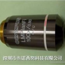 奥林巴斯长工作悬殊电子显微镜LMPLanFI 100X/0.80