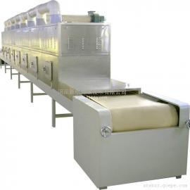 带式微波干燥设备