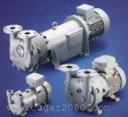 NASH(纳什)真空泵2BV2 070-ONC