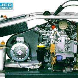 宝华压缩机PE200直销 德国宝华压缩机总代