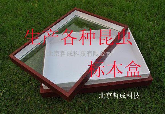 昆虫生活史标本盒、标本盒报价、昆虫标本盒供应商