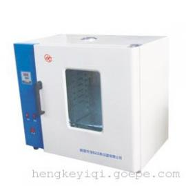 数显鼓风干燥箱-电热鼓风干燥箱-煤炭检测通用烘干箱