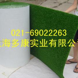 (上海多康)粘金草、细金淘金草、抓金草