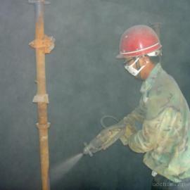 广东垃圾发电厂厌氧反应池聚脲施工