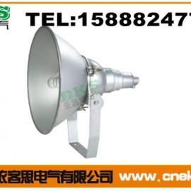 NTC9210-L250防震投光灯 250W金卤灯光源