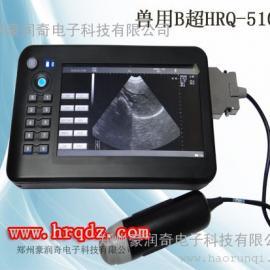 手持式�F用B超�CHRQ-5100AV(A型)