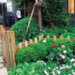 郑州私家别墅花园景观设计