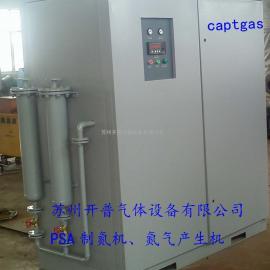 设备氮气发生装置,氮气设备,高纯制氮机CPT4N-30