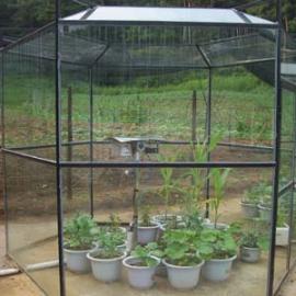 开顶式植物生长箱-OTC