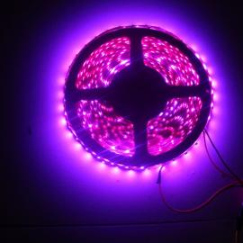 5050LED软灯条丨高亮LED软灯条 led灯带功率