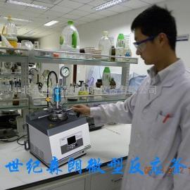 北京微型高压反应釜