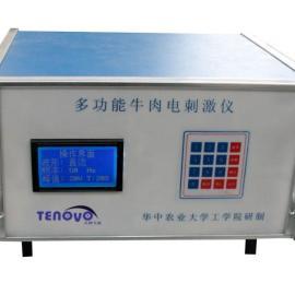 北京TENOVO多功能肉质点刺激嫩化仪TENOVO-1