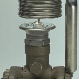 热力喷射阀TEAT20-12�O068G2055